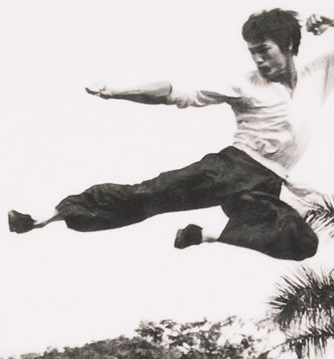 Mens_Bruce_Lee_Flying_Kick_T_Shirt_from_Chaser_LA_print_Close_up_478_514_76