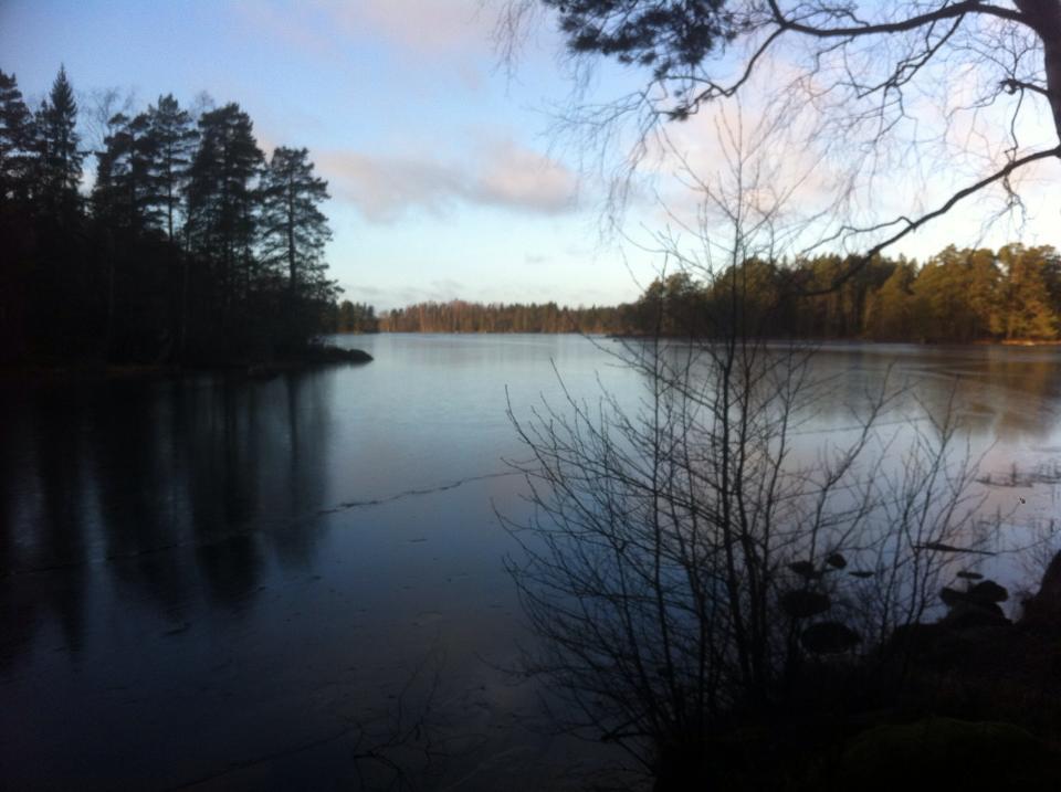 Sweden II